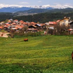 Rhodope Mountains 182 guest houses