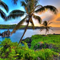 Maui 19 B&B / chambres d'hôtes