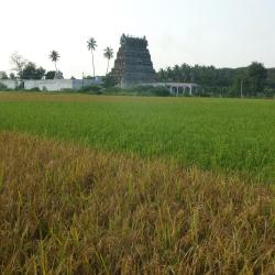 Tamilnádu