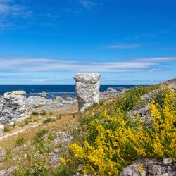 Gotland 7 serviced apartments