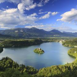 Bled Region