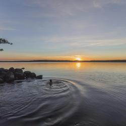 Värmland 8 lodges