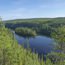 Murmansk Region