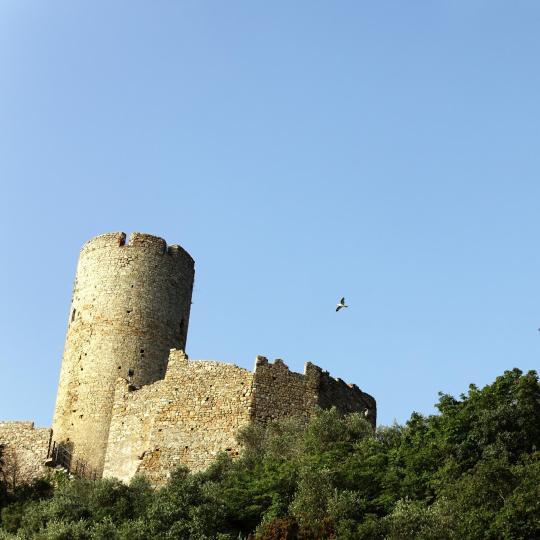 Ursino pilis Katanijoje