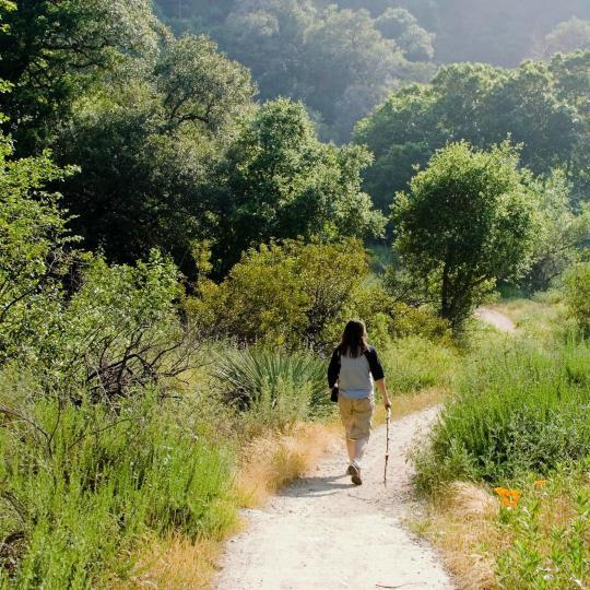 Hiking in Gaasterland