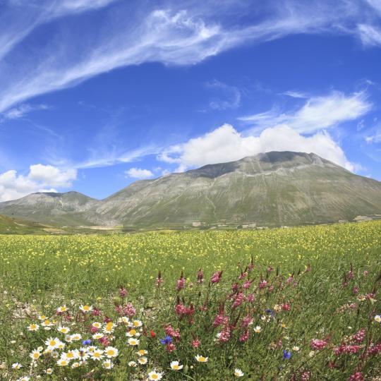 Excursions to Monte Cucco Park