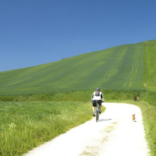 Mountain biking around Lake Trasimeno