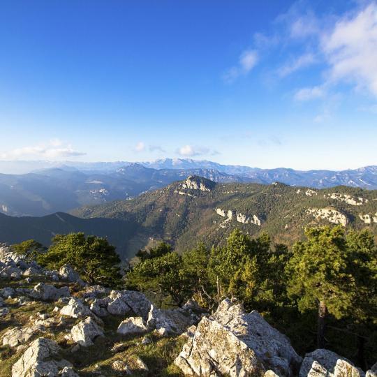 Parc Naturel de la Zone Volcanique de la Garrotxa