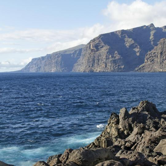 Whale and dolphin watching in Los Gigantes