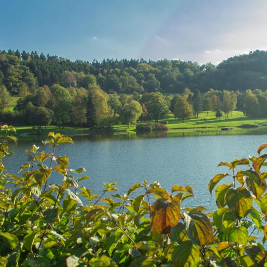 Connect with nature on the Eifelstieg Trail