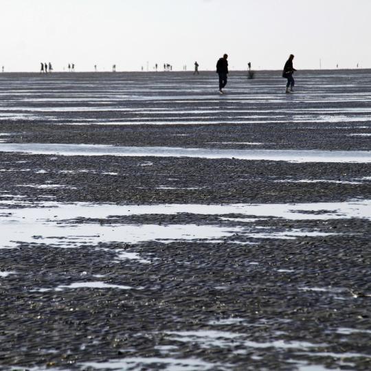 Übers Wattenmeer wandern