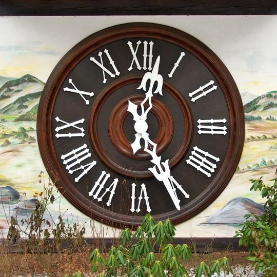 See the world's largest cuckoo clock in Schönach