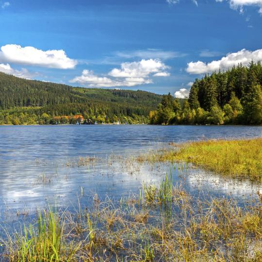 Sur de la Selva Negra: lagos, spas y relojes de cuco