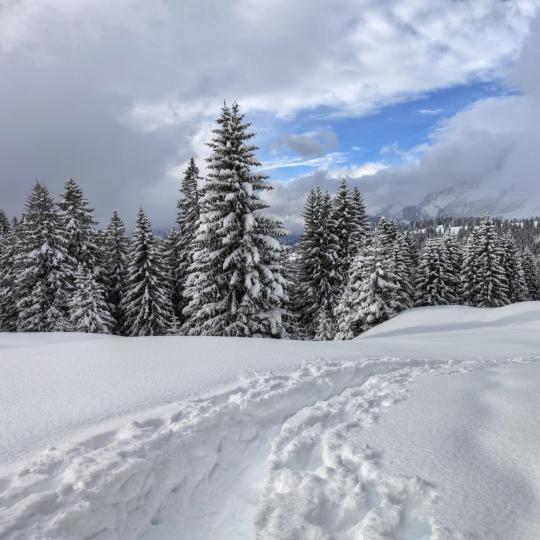 Balade en raquettes dans les Dolomites