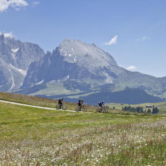 Explorez les Dolomites à vélo