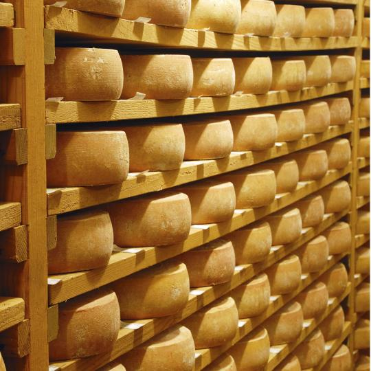 Maleny Cheese Factory