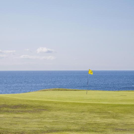 Championship golf courses