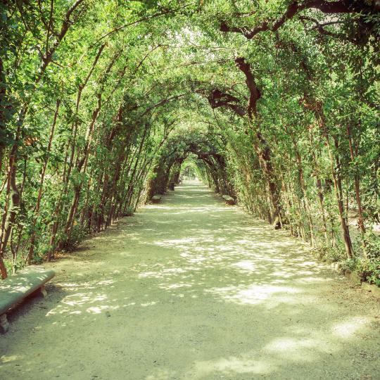 The Chianti Sculpture Park