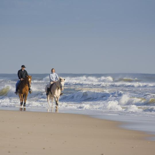 Horse riding in the Paphos countryside