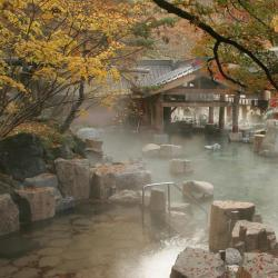 Properties with Onsen  4 properties with onsen in Miyajima