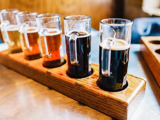 7 лучших направлений для любителей пива