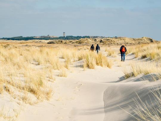 アムステルダムから行けるオランダの島5選