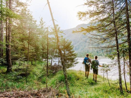 5 foreste della Germania davvero magiche