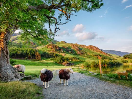 Relax & revitalise in the UK's top national parks