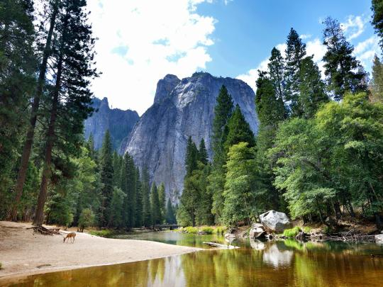 Must-Visit National Parks in the US