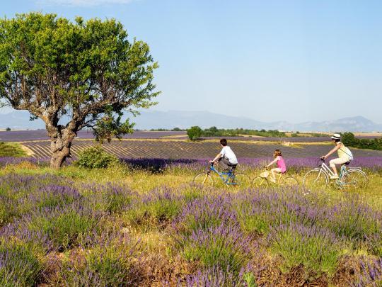 Des vacances de rêve à vélo : le Luberon