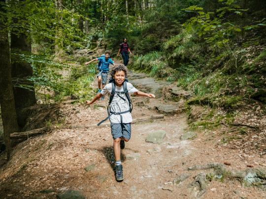 Wundervoller Wanderurlaub: Der Eifelsteig