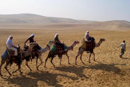 Anne and Ray, guests and very ornary camels