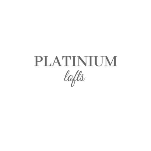 PLATINIUM lofts