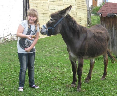 Natascha Stark mit Esel Fridulin