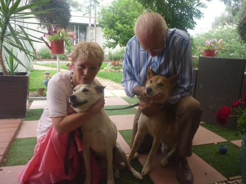 chris & charles with indo,a pet dingo