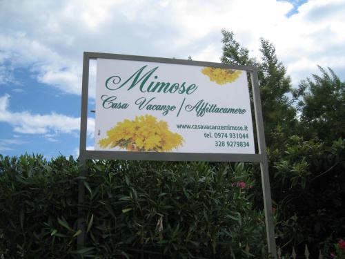 insegna mimose