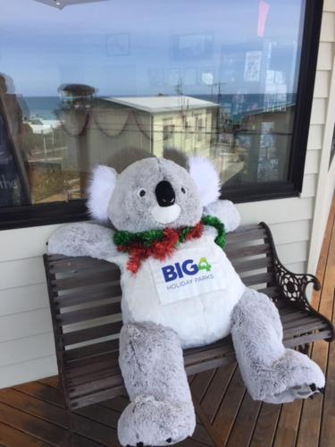 BIG Ted - Apollo Bay BIG4 Pisces mascot