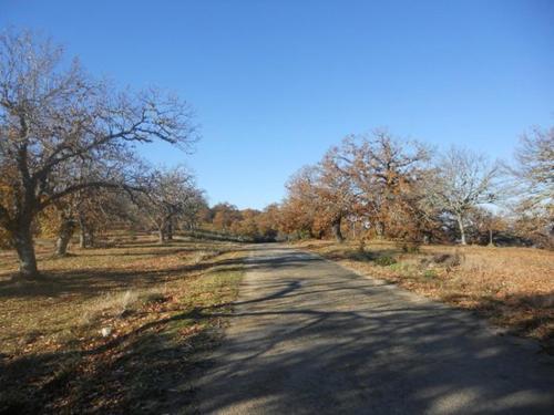Caminho da quinta