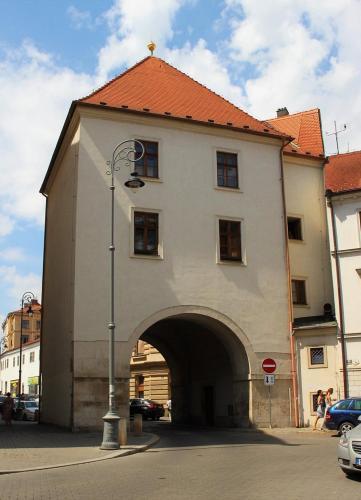 Rooms Novobranská-Orlí