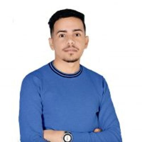 Mohieddine ALLALI