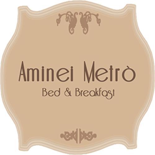 Logo AmineiMetro