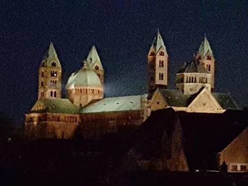 Domizil Domblick Speyer - OHNE Testpflicht!