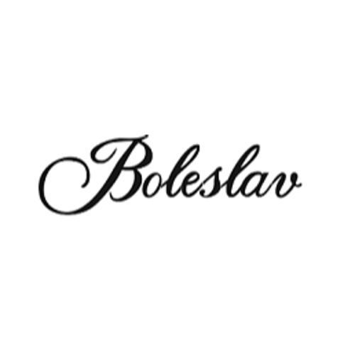 Noclegi Boleslav