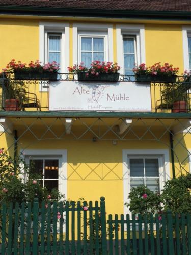 """Hotel Pension """"Alte Mühle"""""""