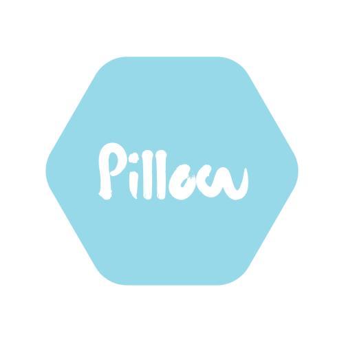 Pillow Property Partners