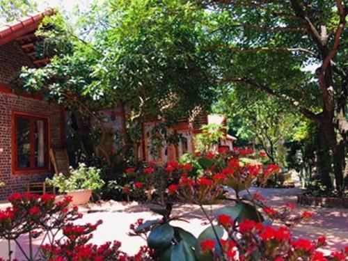 Tam Coc friendly homestay (Năm Nam)