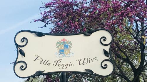 Villa Poggio Ulivo Apartments